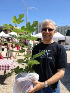 Me at the farmers' market with a fig tree I bought.