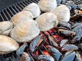Grilling clams and mussels, I can't wait.